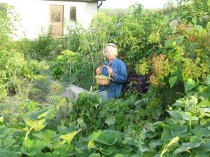 Cancelled - Year-round Gardening for Beginners @ Menomonie Market Food Co-op